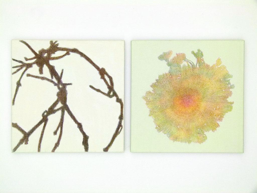 Farbige-Schatten-15