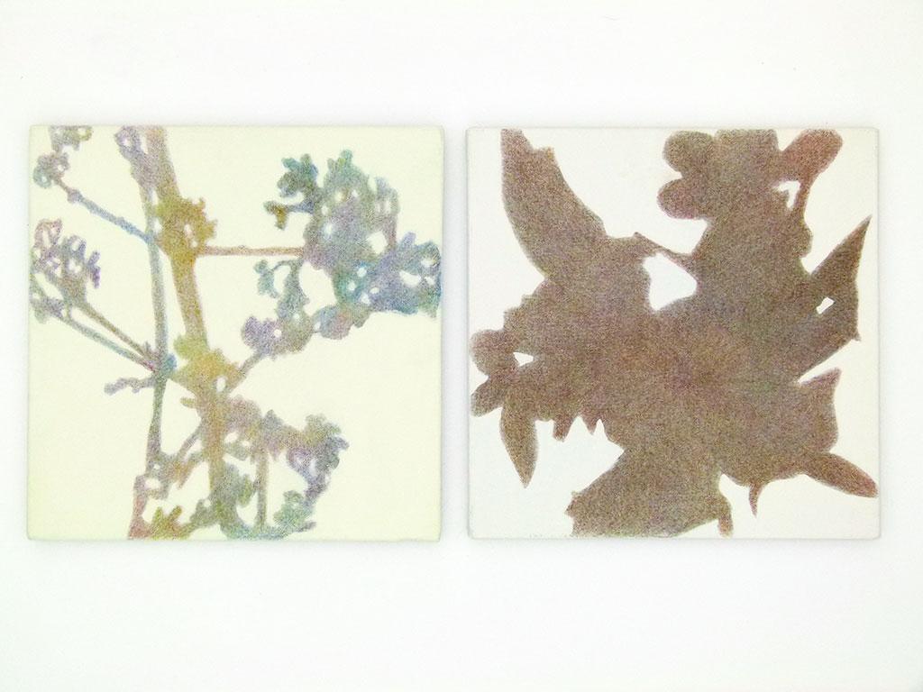 Farbige-Schatten-9