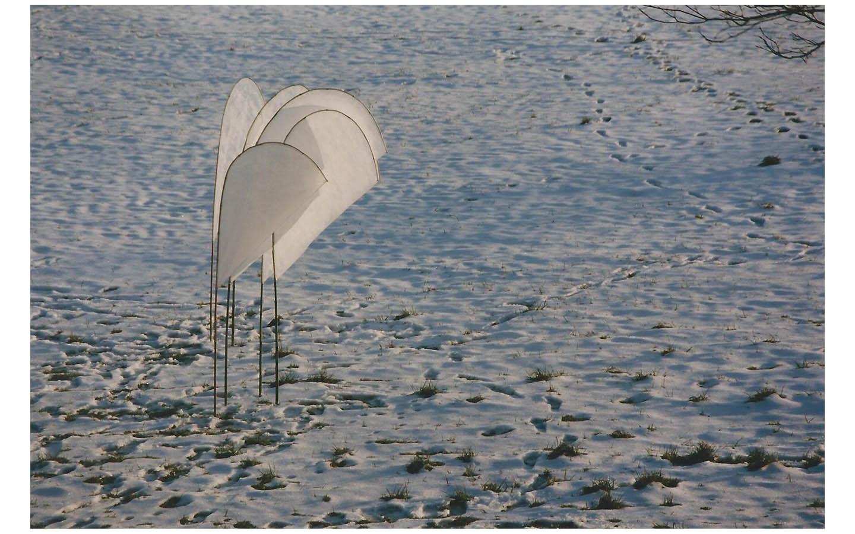 Ort der Winde_0016_Flügel 20