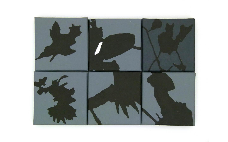 Schatten klein (26)