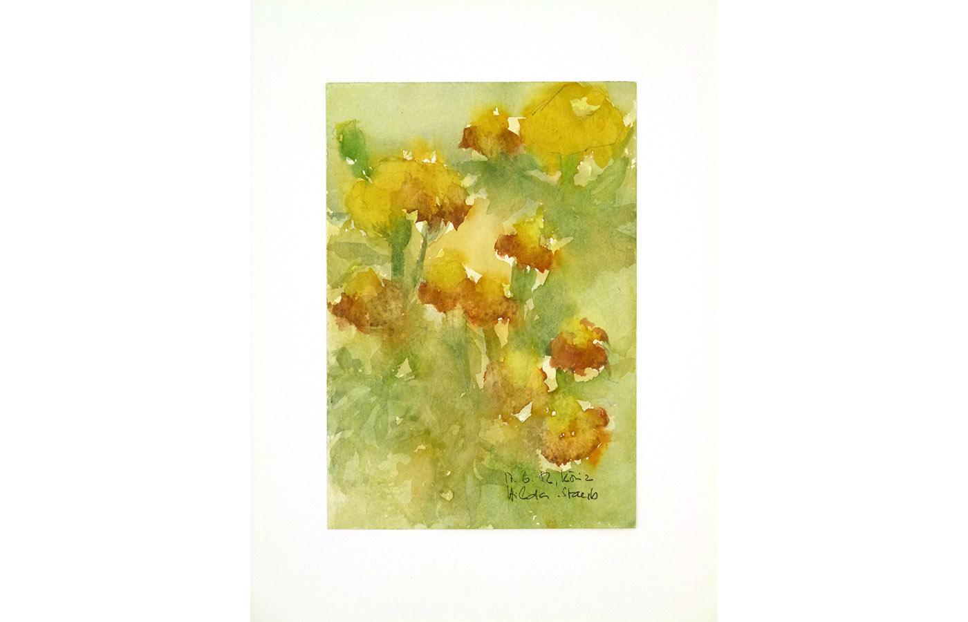 Blumen_0023_L1100435a